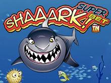 Акула Суперставка онлайн казино на деньги